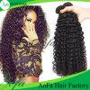 Kinky brésilien de qualité supérieure des cheveux bouclés vierge non traités