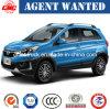N° 1 des ventes par point chaud chinois--Gasoline1.5t SUV haut de gamme à Q25 SUV (voiture)