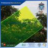 Sgs-anerkannte hochwertige Form-Raum-Acrylblatt-hohe Beförderung goldener Suppluer-HGZ