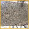 Дешевые верхние части кухни гранита бабочки желтого цвета строительного материала Бразилии встречные