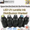 Inchiostro curabile UV del LED per Epson Dx4. Dx5. Dx6. Dx7. Teste di stampa Dx8
