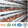 Славные клетки батареи цыпленка цены и качества