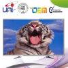 2016 Uni/OEM heißer Verkaufs-konkurrenzfähiger Preis 42-Inch E-LED Fernsehapparat