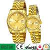 Business Watch 316 Relógios de aço inoxidável All Gold Plated