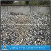 庭のための自然な磨かれた灰色の小石の石
