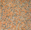 Mattonelle del granito dell'acero & lastre rosse G562