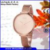 Wasserdichte Uhr-Legierungs-Uhr für Frauen-Luxuxuhr (Wy-109A)
