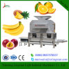 Большое обрабатывающее оборудование плодоовощ ананаса емкости 3t/H померанцовое к извлекать сок