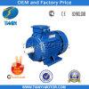 Pesado-dever Electric Motor da C.A. de Y2 Three Phase para Selling