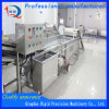 Fruit and Vegetable Processing Equipment Vegetable Cleaner Bubble Cleaning Machine