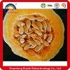 Extrait de graines de citrouille soluble dans l'eau / Extrait de graines Cucurbita Pepo / poudre de pépins de citrouille