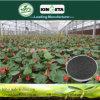 Kingeta migliora il fertilizzante composto basato carbonio NPK 15-5-10 della microflora del terreno