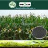 Kingeta registra il fertilizzante composto basato carbonio NPK 15-5-10 del terreno pH