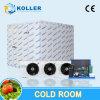 Salle froide pour la glacière à grande capacité