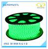 Indicatore luminoso di striscia flessibile approvato di RoHS LED del Ce con il prezzo di fabbrica