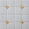 Застекленные керамические плитки пола (889#)