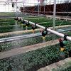 온실 증가를 위한 물 저축 관개 시설