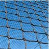 Schermi netti di baseball per la strumentazione di preparazione di sport