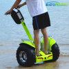 최신 판매 Ecorider Esoii 전기 각자 균형을 잡는 스쿠터를 서 있는 2개의 바퀴