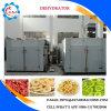 Nahrungsmittelentwässerungsmittel-Frucht u. trocknende Gemüsemaschine
