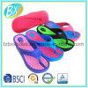 Nuovi pistoni di EVA dei sandali della cinghia delle donne
