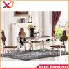 연회를 위한 현대 결혼식 스테인리스 의자 또는 대중음식점 또는 호텔 또는 홀 또는 사건