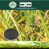 Il carbonio del fertilizzante dello scarificatore di Kingeta ha basato il fertilizzante composto NPK 15-15-15