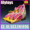 Lilytoys - sconto gonfiabile della diapositiva 10% in azione, grande trasparenza gonfiabile