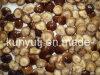 Hongo Shiitake enlatado con alta calidad