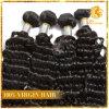 100%年のバージンのブラジルの人間の毛髪の深い波(TN-52)
