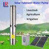 Solarsystem der pumpen-6inch für Amerika