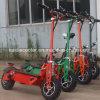 [س] حامل شهادة [إفو] [أفّ-روأد] 2 عجلات يطوي درّاجة ناريّة كهربائيّة [1600و]