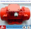 O motor de vibração eléctrico de corrente contínua