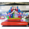 Diapositiva de agua inflable/diapositiva de agua inflable de la piscina