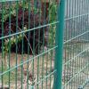 ¡Dirigir la fuente! Cerca soldada revestida plástica del jardín del acoplamiento de alambre del PVC