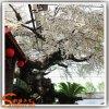 Flor de cereja artificial branca personalizada da árvore