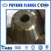 Flange especial F304