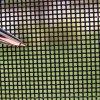 Порошковое покрытие черного цвета из нержавеющей стали 304 сетчатый экран безопасности для окна