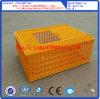 Gaiola do transporte da galinha/caixa plásticas modificação da galinha