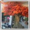 Maple artificial árvores são utilizados em interiores e exteriores