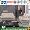 Sofá moderno Metrial opcional Upholstry Tg-S197 da mobília da sala de visitas