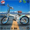 250W bicicleta de dobramento elétrica gorda do pneu En15194 com bateria de lítio