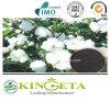 Fertilizzante organico puro dell'alto azoto
