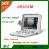 Máquina portátil Mslcu36 da grande máquina USG do ultra-som da cor do portátil da qualidade