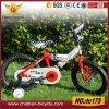Mittlerer Grad-Markt-populäres Kind-Fahrrad