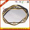 De Machine van de VacuümDeklaag van Ipg van juwelen/Machine van het Plateren van Juwelen de Gouden Ionen