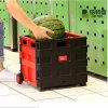 Beste Rood en Zwart Goed Plastic Vouwbaar het Winkelen van de Prijs Karretje