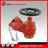 2.5インチBS336の消火栓の着陸弁