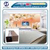 Eco-oplosbaar Wit In reliëf gemaakt Behang
