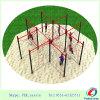Equipo al aire libre del parque de la diversión de la gimnasia del patio de la aptitud